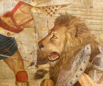 barbary-lion-newromefreetour
